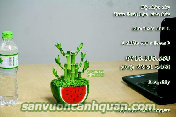 cay-phat-loc-1-600x400 Cây phát lộc đem đến tài lộc giúp công việc thuận lợi đến với bạn