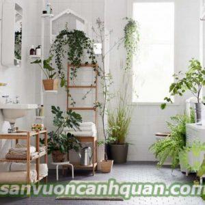 banner-sanvuon1 Home page type 2